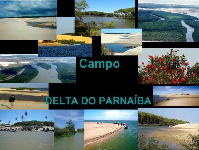 Campo DELTA DO PARNAÍBA