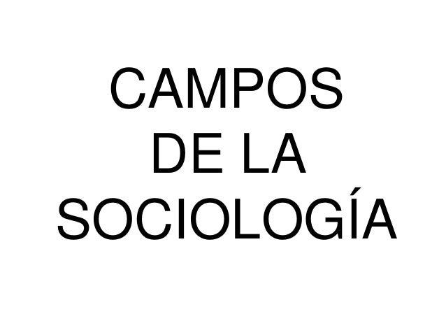CAMPOS DE LA SOCIOLOGÍA