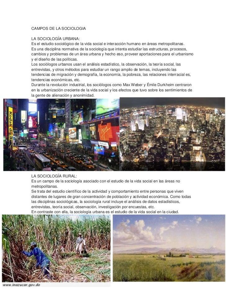 CAMPOS DE LA SOCIOLOGIALA SOCIOLOGÍA URBANA:Es el estudio sociológico de la vida social e interacción humano en áreas metr...
