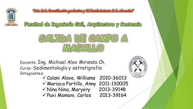 Docente: Ing. Michael Alex Miranda Ch. Curso: Sedimentología y estratigrafia Integrantes:  Calani Alave, Williams 2010-36...