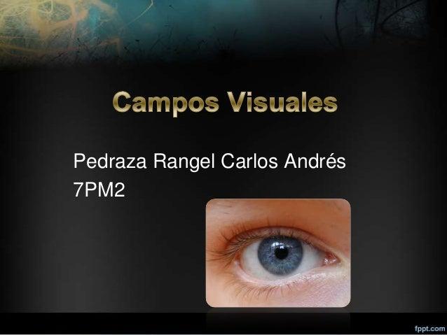 Pedraza Rangel Carlos Andrés7PM2
