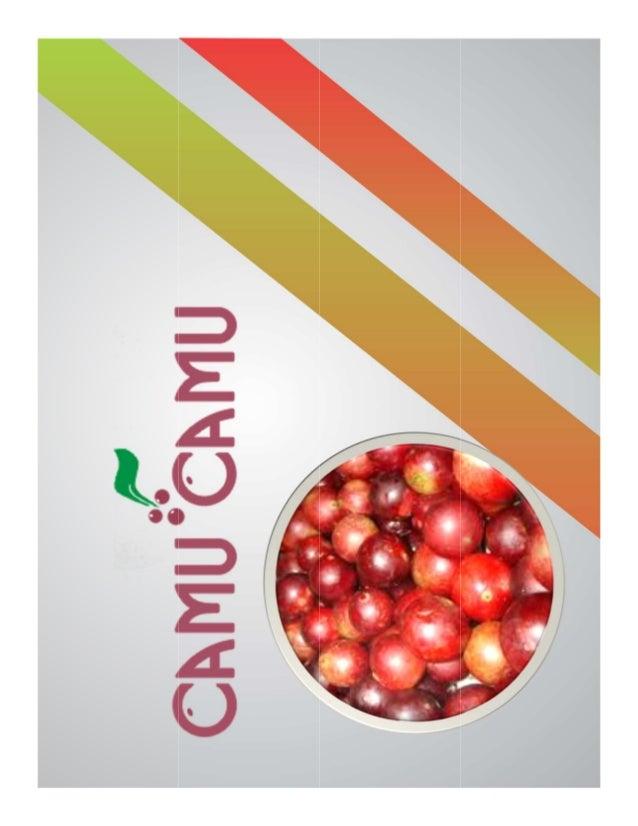 OPORTUNIDADES Peso Valor Puntaje Ponderado 1. En los últimos años se presentó un aumento considerable del consumo del Camu...