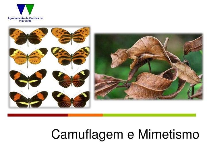 Camuflagem e Mimetismo
