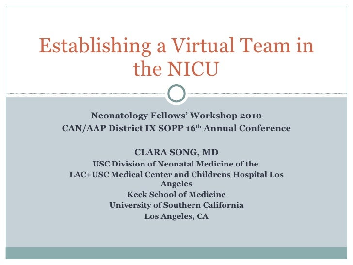 Neonatology Fellows' Workshop 2010 CAN/AAP District IX SOPP 16 th  Annual Conference CLARA SONG, MD USC Division of Neonat...