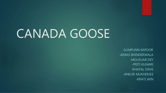 canada goose brand analysis
