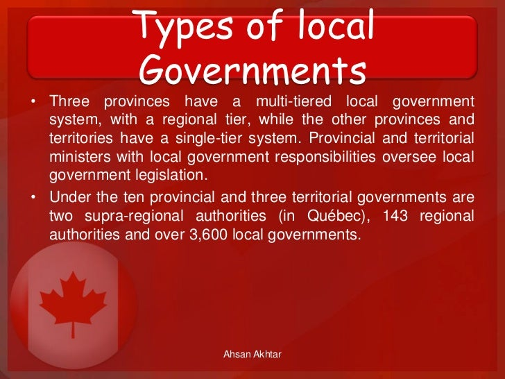 what are the 3 types of local government