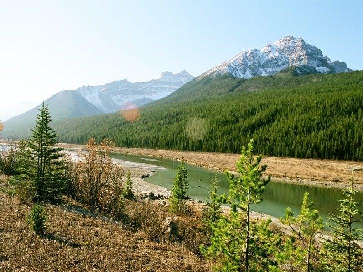 Canada Jasper Park Slide 17