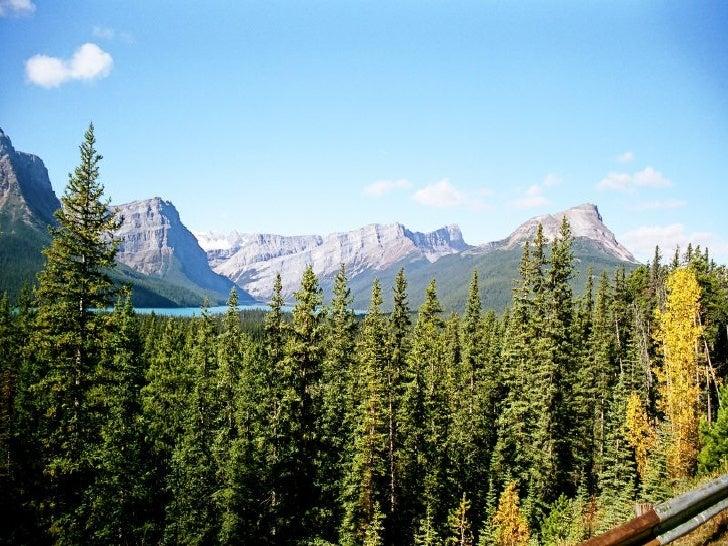 Canada Jasper Park Slide 18