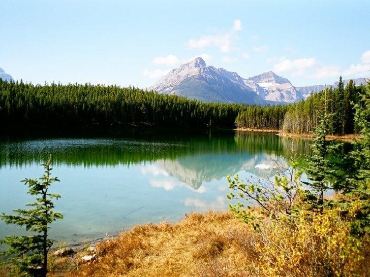 Canada Jasper Park Slide 19