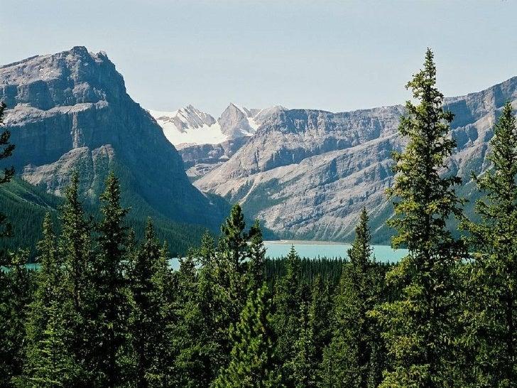 Canada Jasper Park Slide 24