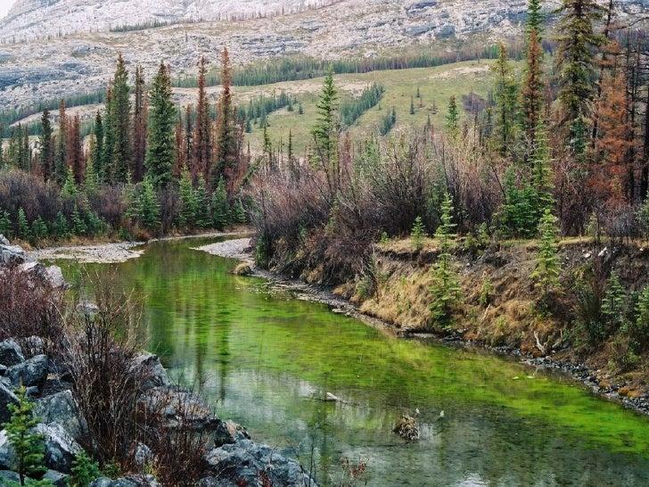 Canada Jasper Park Slide 26