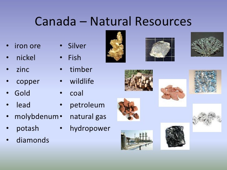 Natural Resources In The Canadian Tundra