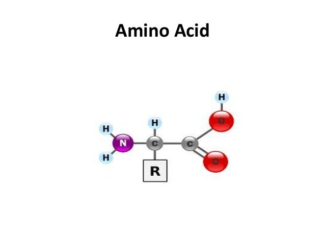 canada peptide com ppt amino acids definition and structure