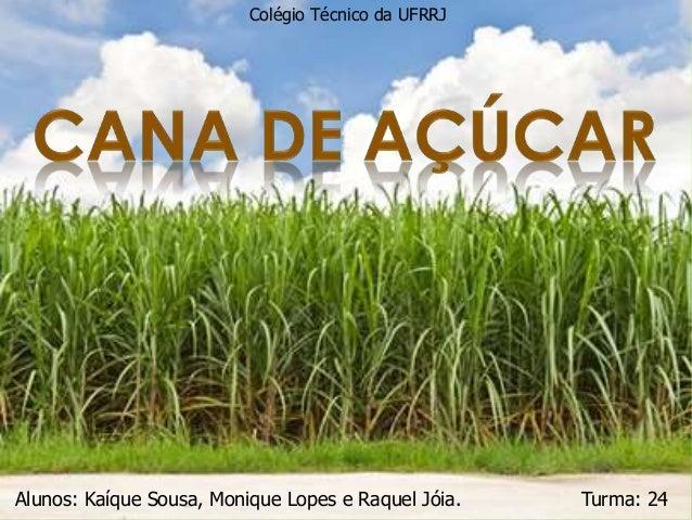 Colégio Técnico da UFRRJ  1  Alunos: Kaíque Sousa, Monique Lopes e Raquel Jóia. Turma: 24
