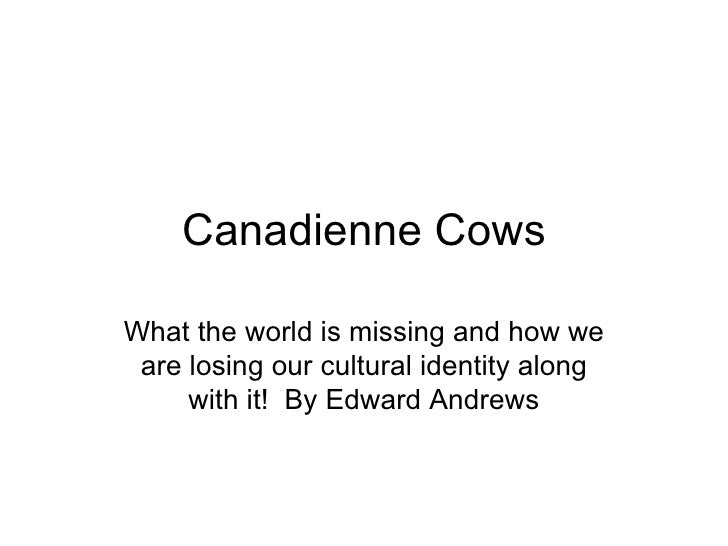 Canadienne Cows What the world is missing and how we are losing our cultural identity along with it!  By Edward Andrews