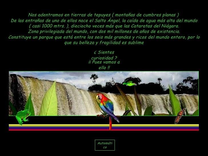 Nos adentramos en tierras de tepuyes ( montañas de cumbres planas )  De las entrañas de uno de ellos nace el Salto Ángel, ...