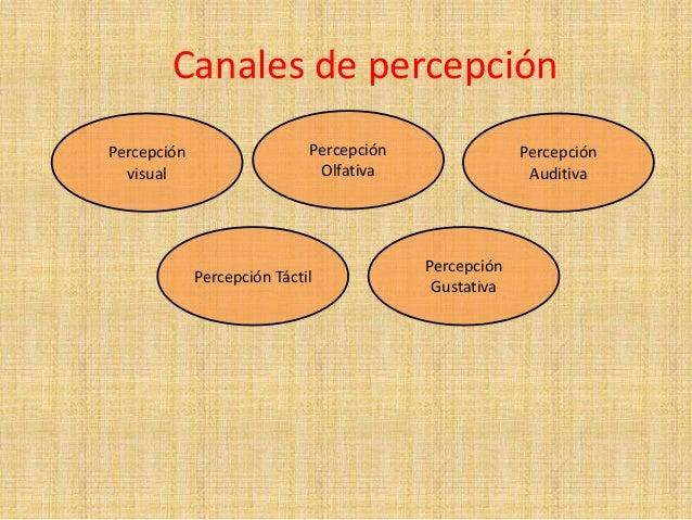 Resultado de imagen de CANALES DE PERCEPCION IMAGEN LIBRE