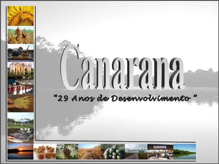 """Canarana """" 29 Anos de Desenvolvimento """""""