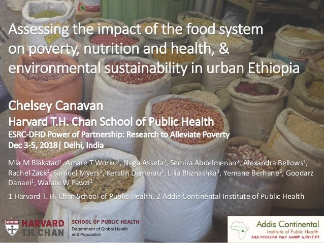 Assessing the impact of the food system on poverty, nutrition and health, & environmental sustainability in urban Ethiopia...