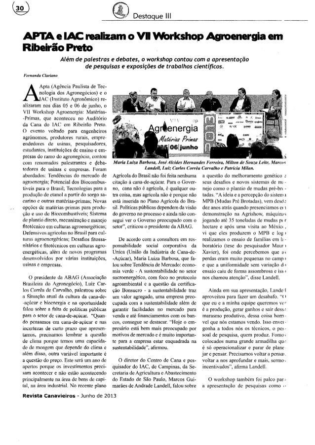 Revista Canavieiros - Junho 2013 (Workshop)