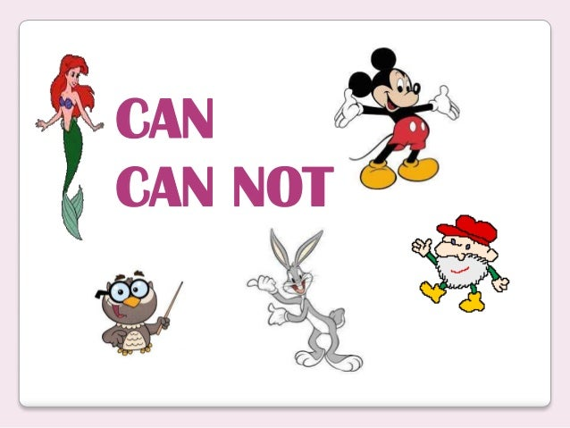 CAN CAN NOT