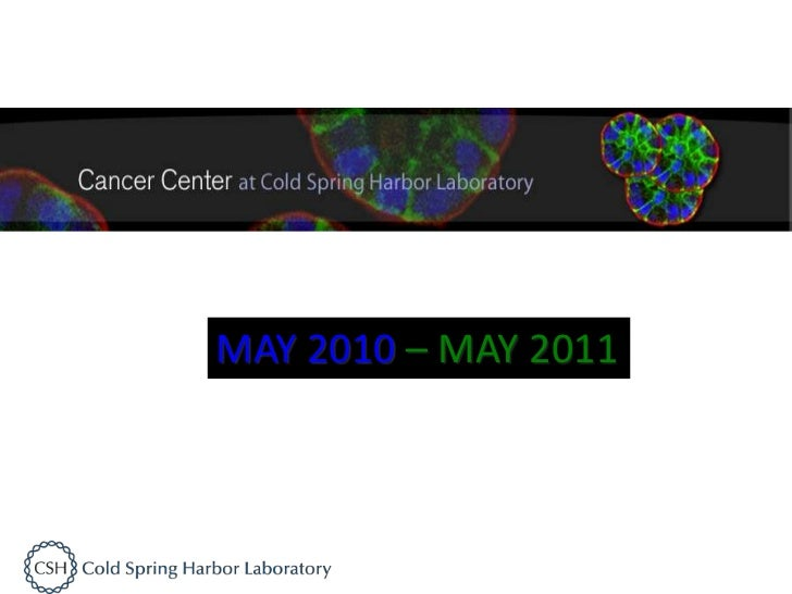 MAY 2010 – MAY 2011