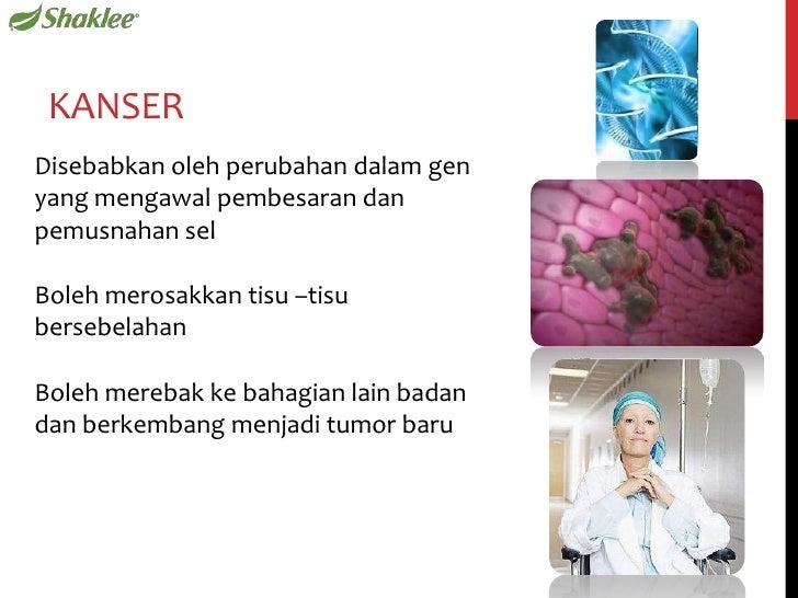 Hidup Sihat Tanpa Kanser Slide 3