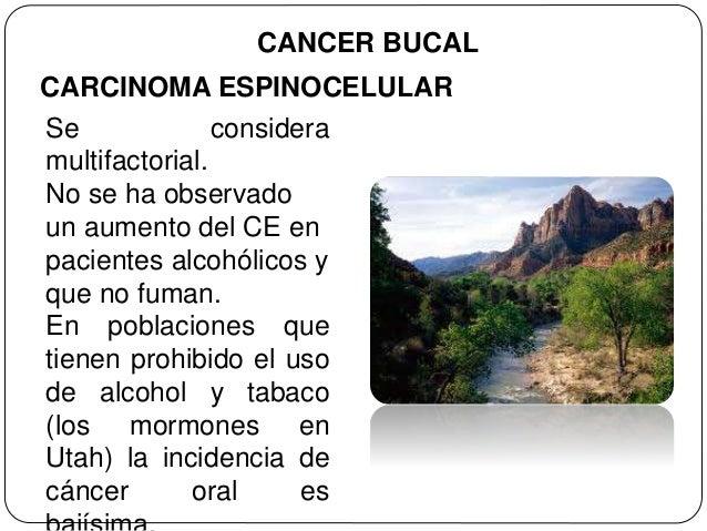 La clínica el tratamiento del alcoholismo las revocaciones