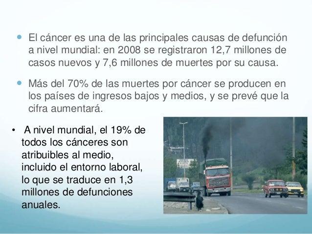 El cáncer es una de las principales causas de defunción a nivel mundial: en 2008 se registraron 12,7 millones de casos n...