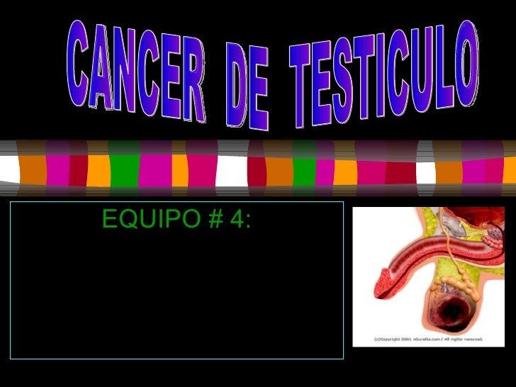 EQUIPO # 4: González  cabriales Emilce Meza Izquierdo Xochitl Robles Clemente Yarisel Ruiz Chan Iliana CANCER  DE  TESTICULO