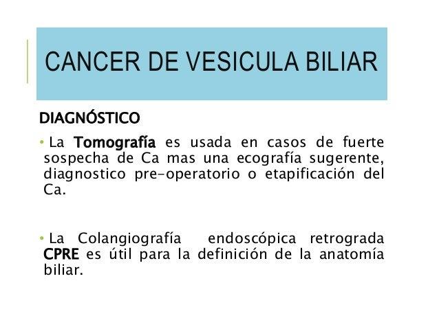 Ves cula biliar y dolor de espalda dorsal y cervical qu relaci n tienen - Alimentos prohibidos vesicula ...