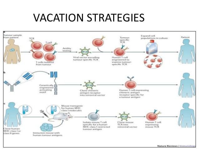 VACATION STRATEGIES