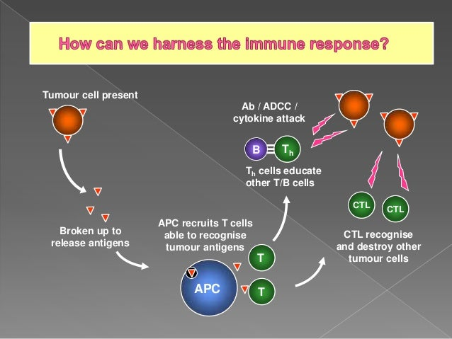 ACTIVATION OF TUMOR SPECIFIC T- CELL