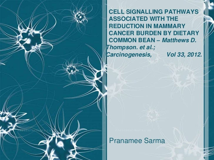 CELL SIGNALLING PATHWAYS ASSOCIATED WITH THE REDUCTION IN MAMMARY CANCER BURDEN BY DIETARY COMMON BEAN – Matthews D.Thomps...