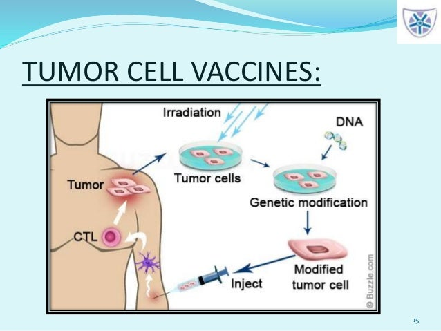 TUMOR CELL VACCINES: 15