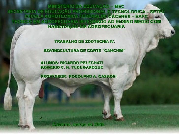 MINISTERIO DA EDUCAÇÃO – MEC SECRETARIA DE EDUCAÇÃO PROFISSIONAL E TECNOLOGICA – SETEC ESCOLA AGROTECNICA FEDERALDE CÁCERE...