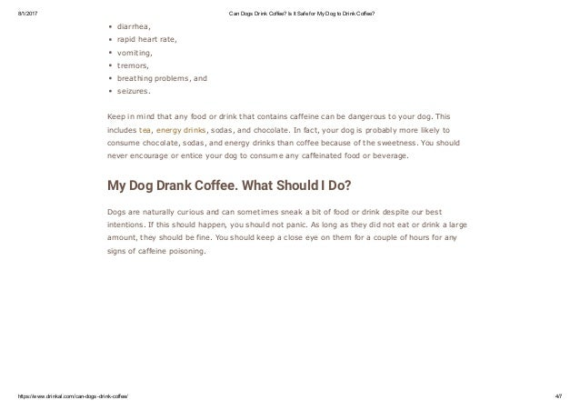Can Dogs Drink Caffeine