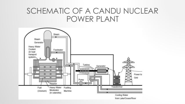 CANDU6 Reactor at a Glance
