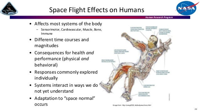 Human Research Program Space Flight Effects on Humans 22 Image from: http://zerog2002.de/bodyreactions.html • Affects most...