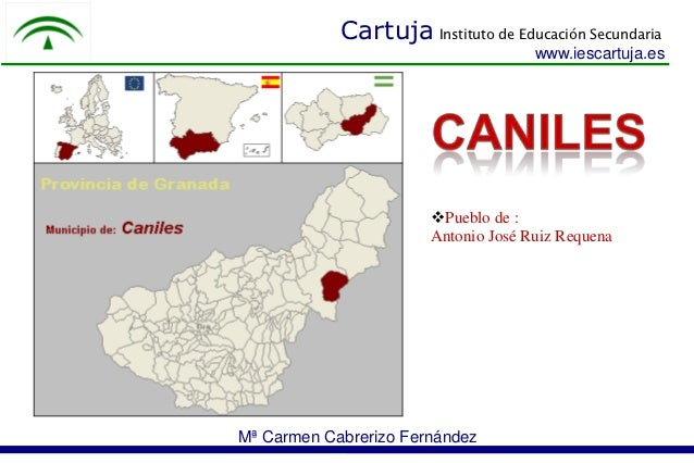 Cartuja Instituto de Educación Secundaria                                     www.iescartuja.es                       Pue...