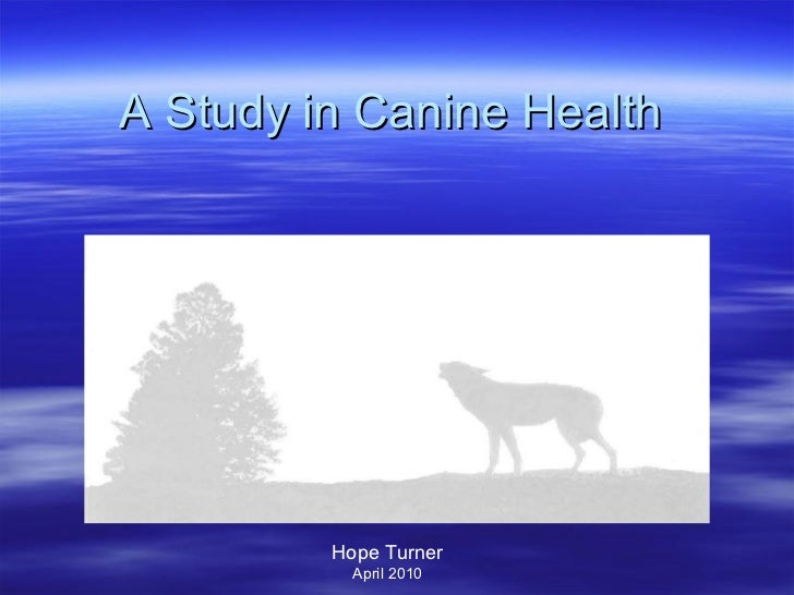 A Study in Canine Health  Hope Turner April 2010