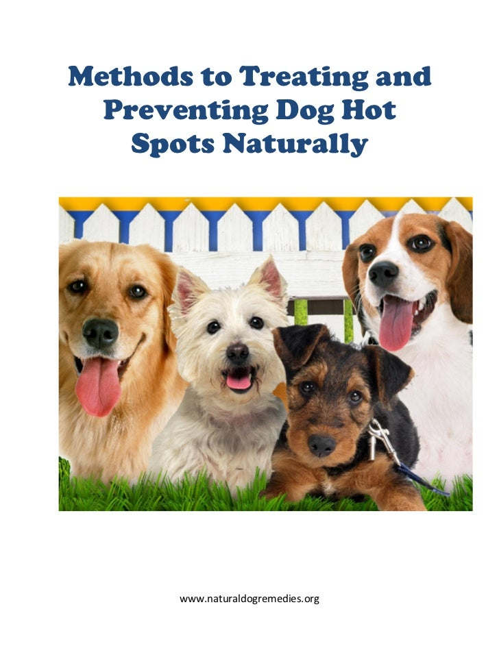 Methods to Treating and  Preventing Dog Hot    Spots Naturally       www.naturaldogremedies.org