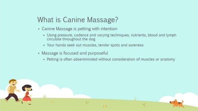 Canine massage.pptx