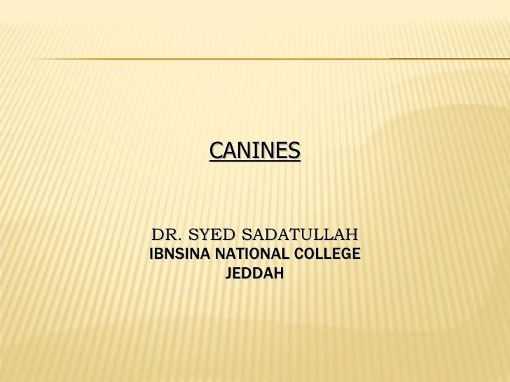 CANINES DR. SYED SADATULLAH IBNSINA NATIONAL COLLEGE JEDDAH