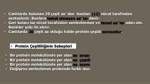 Süt proteini ve proteinlerin hidrolizi