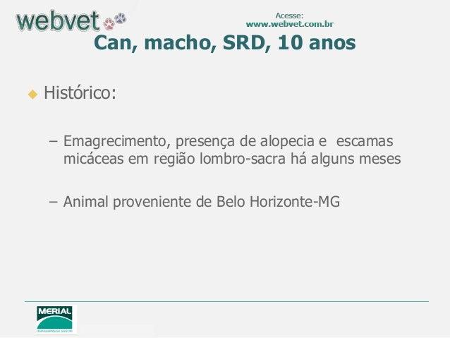Can, macho, SRD, 10 anos  Histórico: – Emagrecimento, presença de alopecia e escamas micáceas em região lombro-sacra há a...