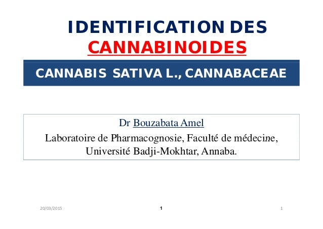 IDENTIFICATION DES CANNABINOIDES CANNABIS SATIVA L., CANNABACEAE Dr Bouzabata Amel Laboratoire de Pharmacognosie Faculté d...