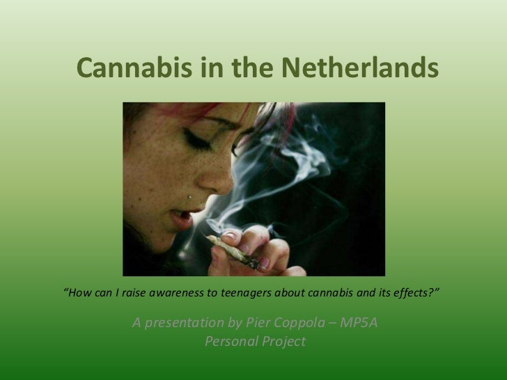 """Cannabis in the Netherlands""""How can I raise awareness to teenagers about cannabis and its effects?""""             A presenta..."""