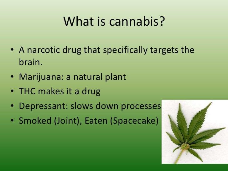 Cannabis and teenagers