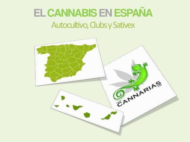 ELCANNABISENESPAÑA Autocultivo,ClubsySativex